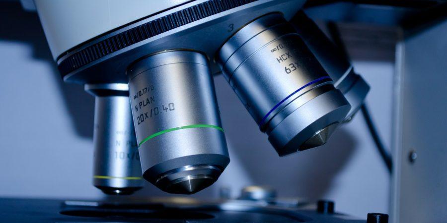 microscope perturbateurs.endocriniens